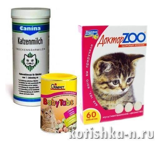 Какие витамины давать котенку
