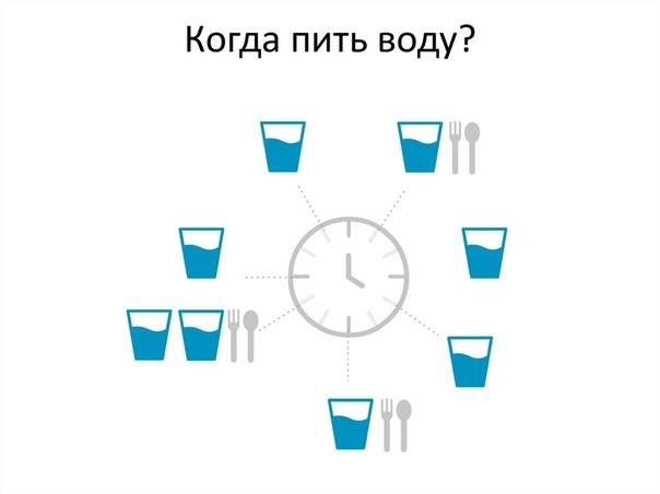 Сколько коты или кошки должны пить воды в день