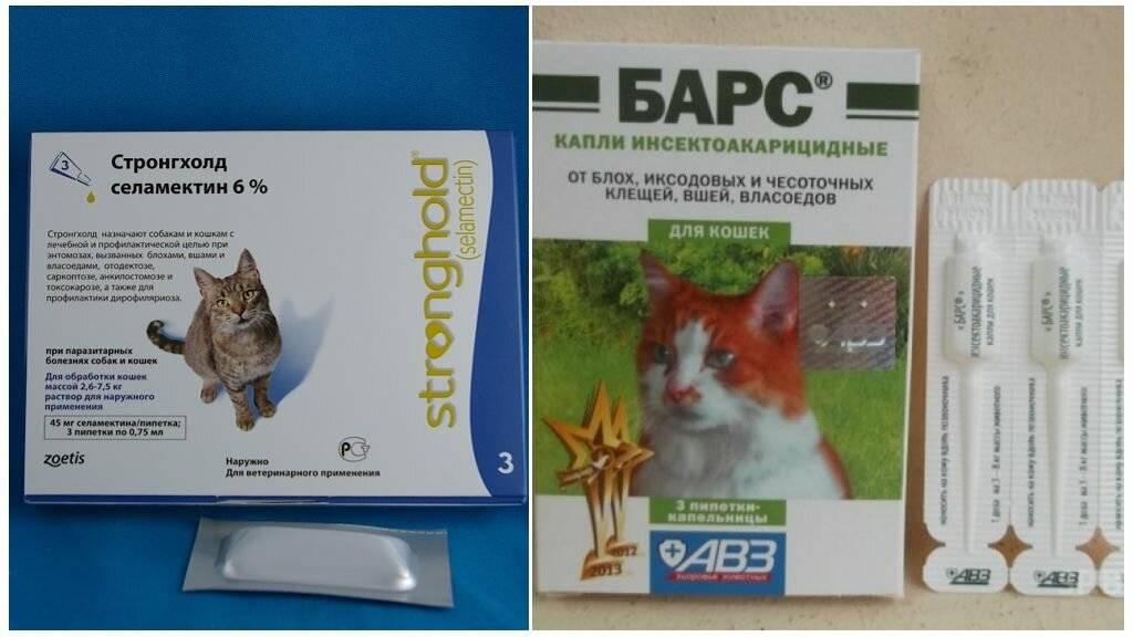 Ушные капли для кошек для лечения