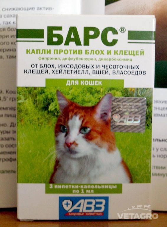 Капли от блох барс для кошек: инструкция и советы по применению капли от блох барс для кошек: инструкция и советы по применению