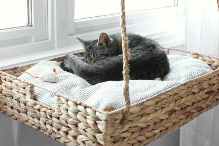 Гамак для кошки: выбираем в магазине или делаем своими руками