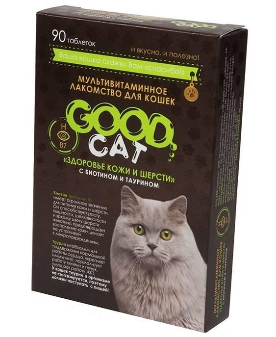 Полный список витаминов для котов, которые помогут остановить выпадение шерсти