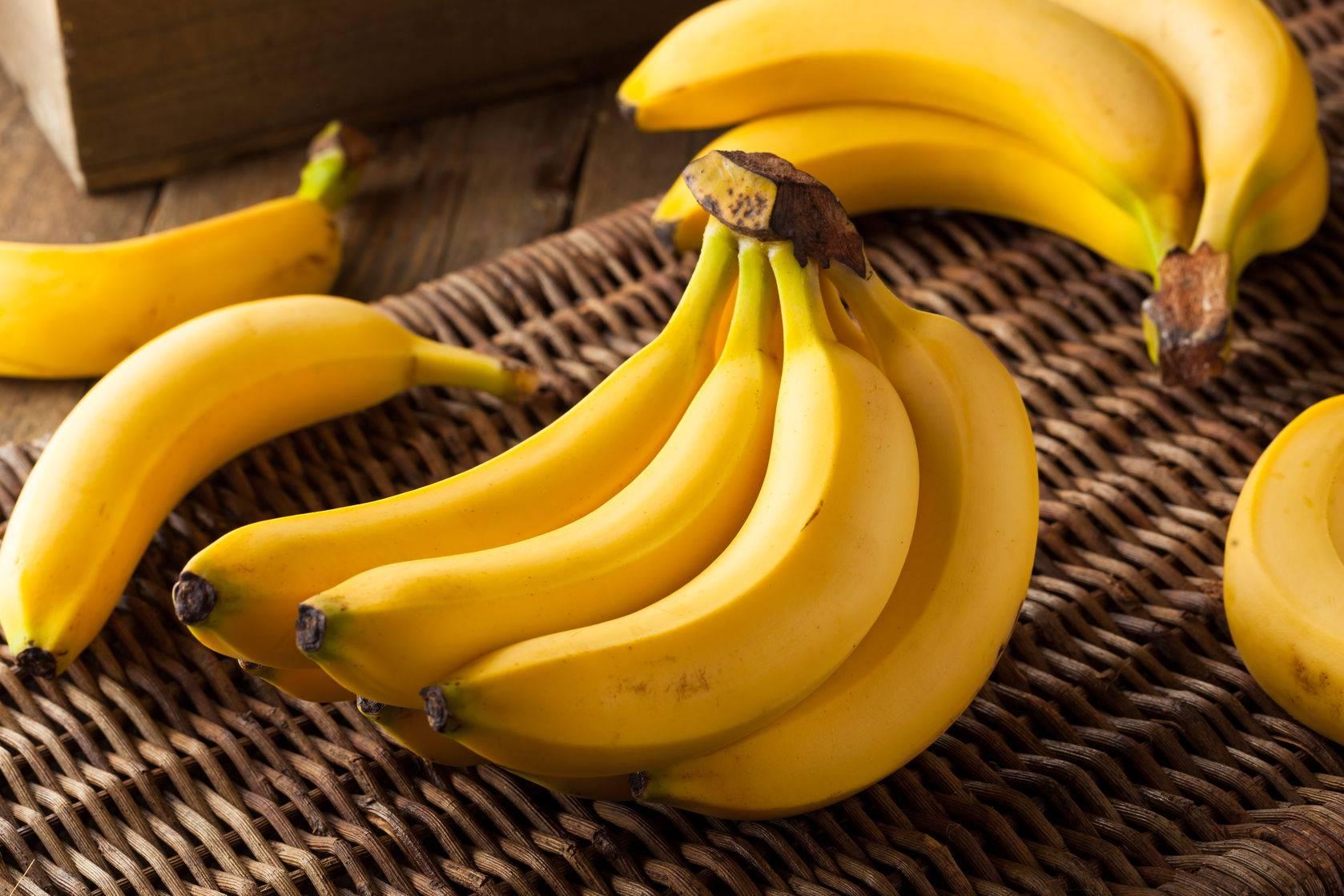 А вы знаете, можно ли щенку давать бананы? полезная информация!