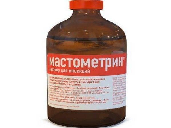 Ветеринарный препарат «мастометрин» для собак и кошек: описание, инструкция по применению