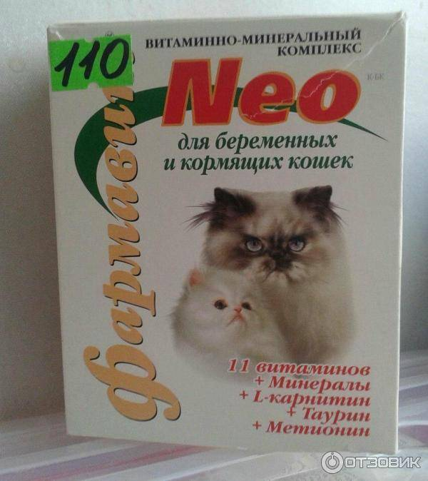 Лучшие витамины для кошек и котов: топ-10 рейтинг 2021