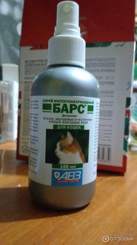 Ушные капли для кошек: применение препаратов