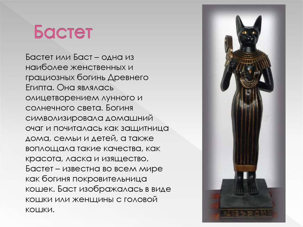 Богиня бастет (баст) – богиня древнего египта с кошачьими коготками