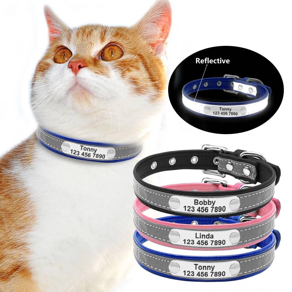 Ошейник для кошек (36 фото): выбор красивого кошачьего ошейника с адресником. светящиеся ошейники, именные и другие виды