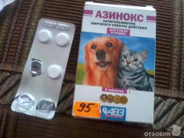 Можно ли азинокс плюс для собак давать кошкам