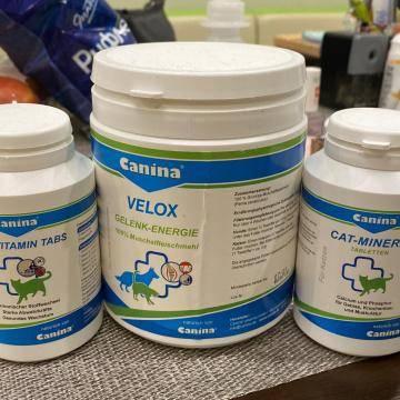 Какие витамины нужны беременным кошкам