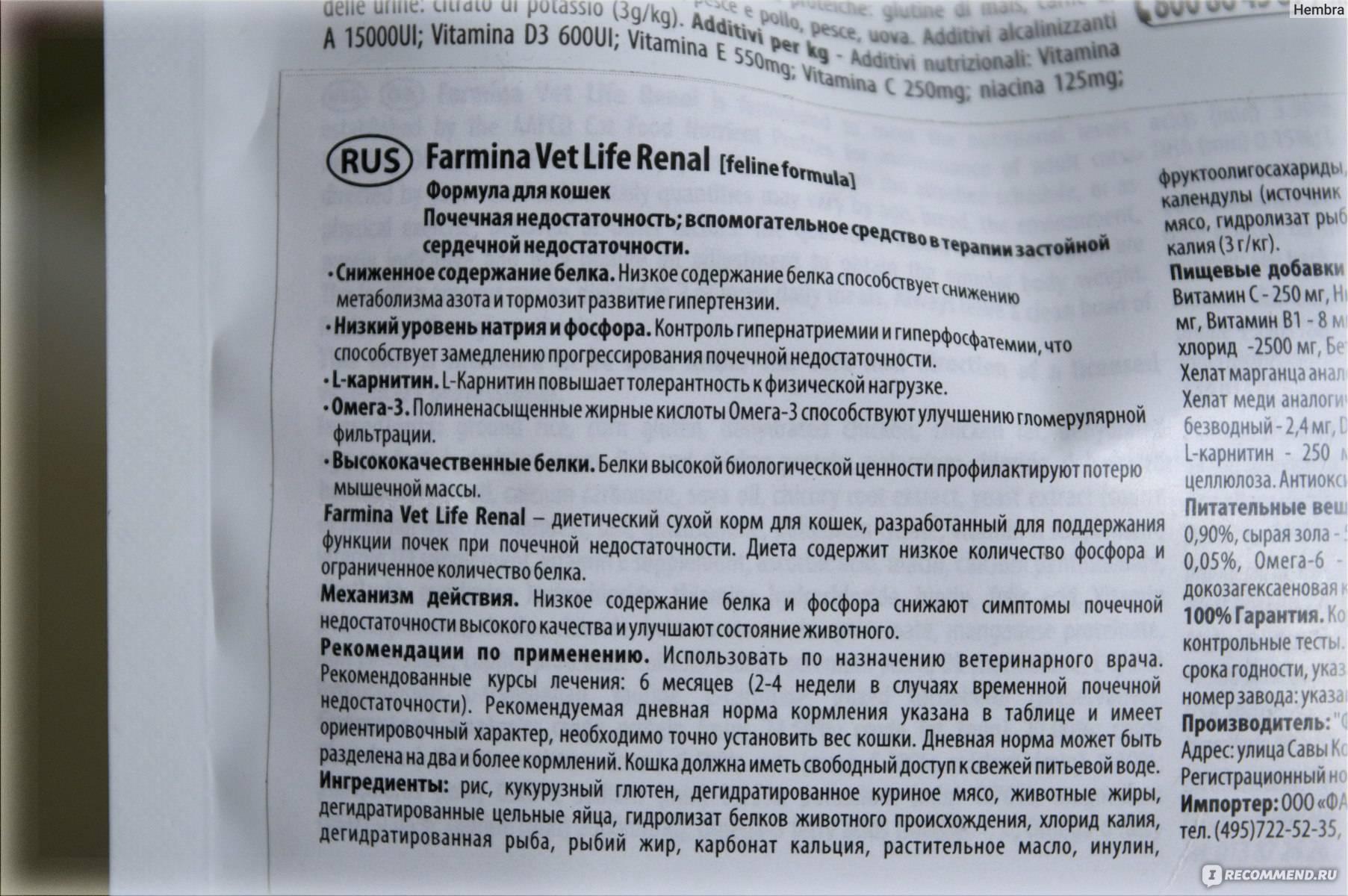 Правила применения препарата «ренал эдвансед» для кошек