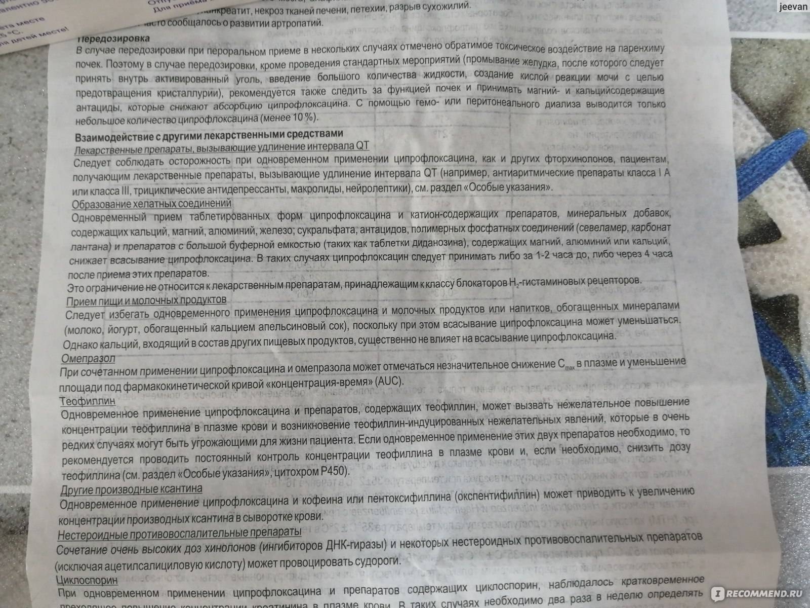 ᐉ если у котенка понос чем лечить – фталазол для кошек дозировка - zoomanji.ru