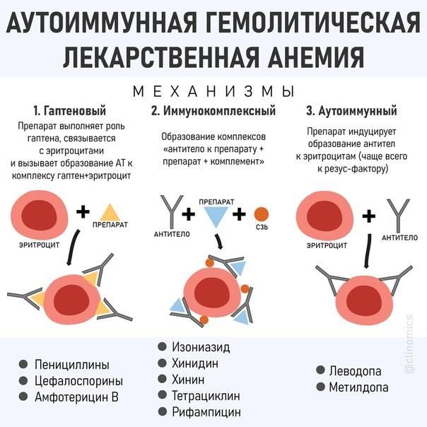Железодефицитная анемия у кошек лечение