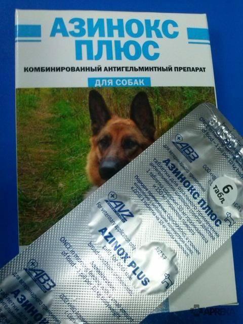 Азинокс плюс для собак: инструкция по применению, состав и цена таблеток, побочные эффекты