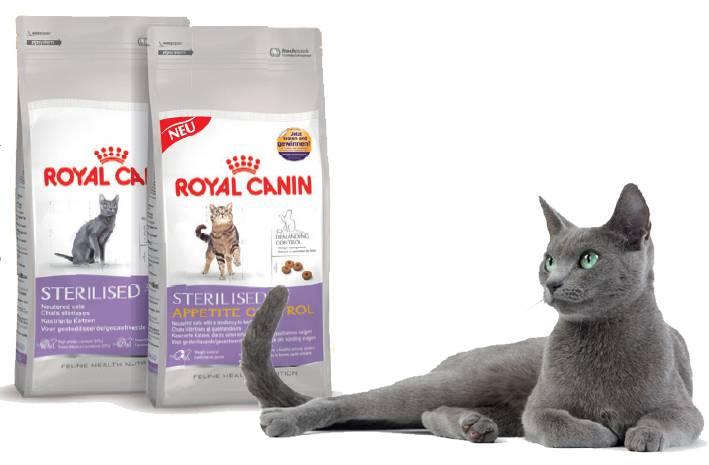 Корм для кошек royal canin kitten