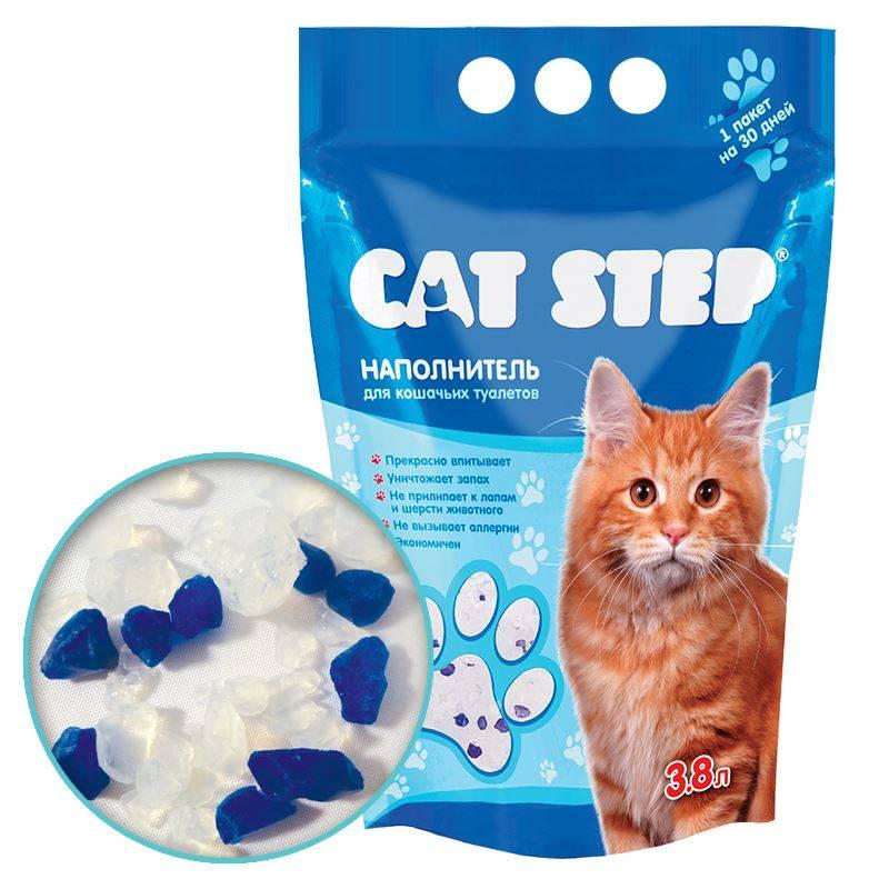 Силикагелевый наполнитель для кошачьего туалета: отзывы, состав, применение. как использовать силикагелевый наполнитель для кошачьего туалета?