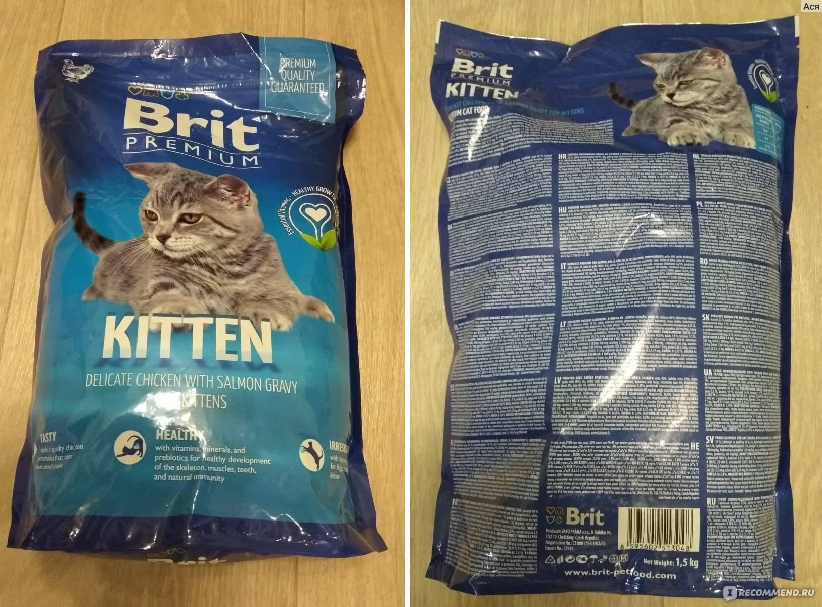 Влажные корма для котят