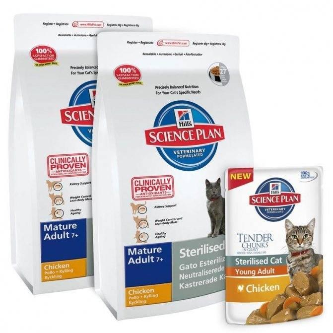 Итальянский сухой и влажный корм для котят и взрослых кошек «monge», состав и назначение продуктов лечебной линейки