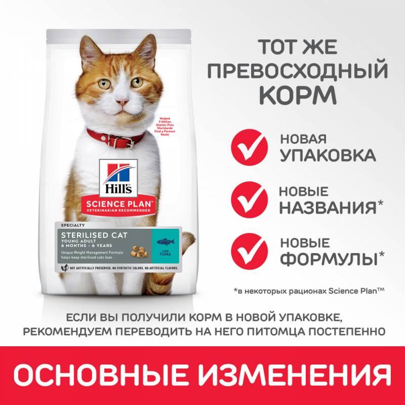 Чем кормить кастрированного кота?