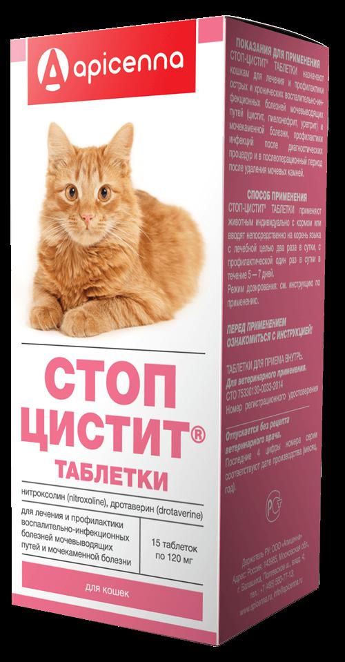 Какие кошки и как нас лечат   garmony-life.ru