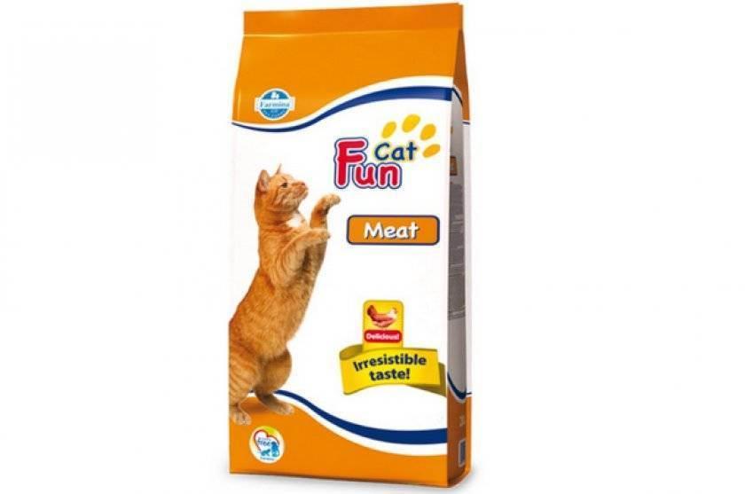 Показатели кормов для кошек: чем больше, тем лучше?