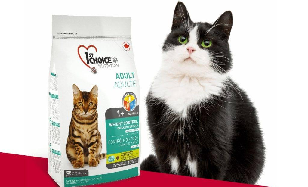 Корм для кошек «пронатюр холистик»: состав и особенности продукта