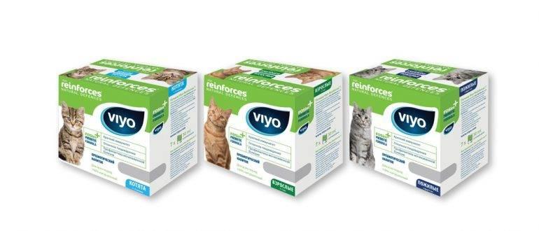 Дисбактериоз кот лечение - муркин дом