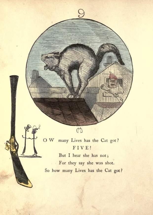 Почему говорят, что у кошки девять жизней? история легенды