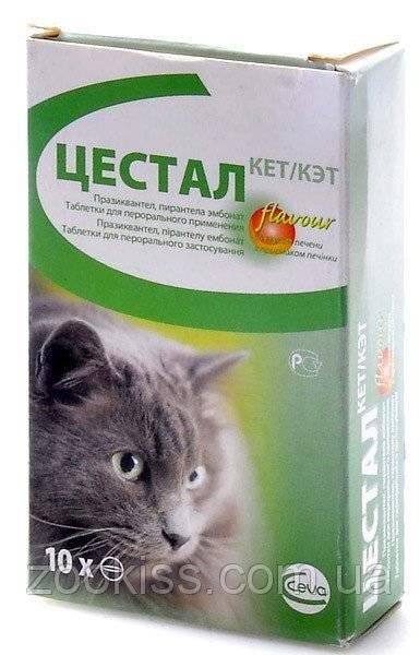 Цестал для кошек - инструкция по применению, отзывы, цена   сайт «мурло»