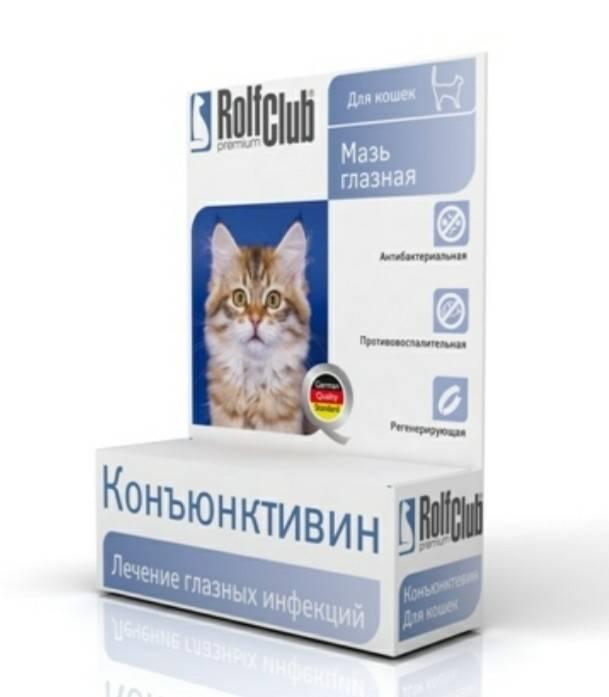 Конъюнктивит у кошек — лечение в домашних условиях, виды, симптомы, причины