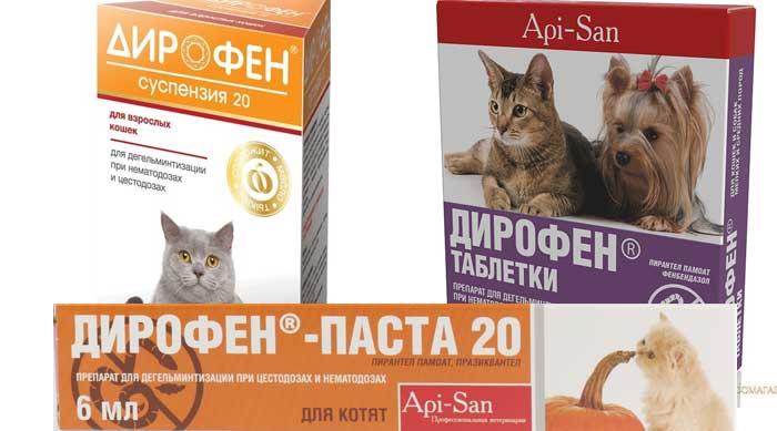 Дирофен плюс таблетки от глистов для кошек и собак: отзывы, описание, инструкция по применению, аналоги