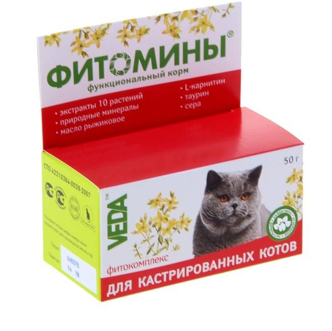 Жидкие витамины для кошек — какие лучше, состав, виды, отзывы ветеринаров