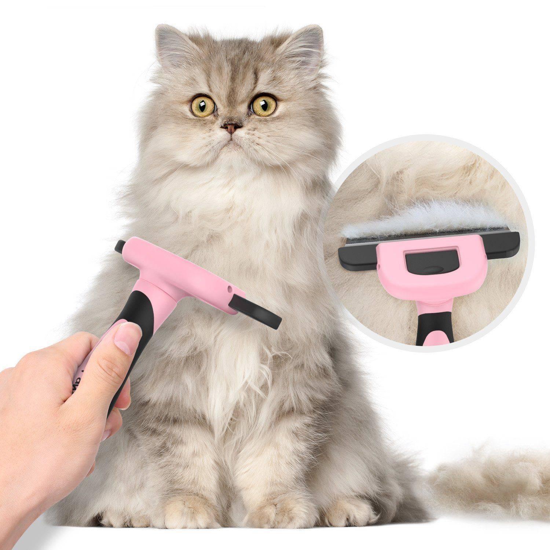 Стрижка котов: особенности и рекомендации