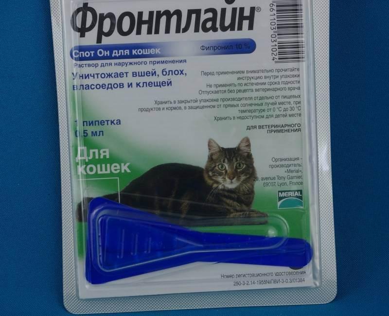 Фронтлайн для кошек и собак: описание видов и свойств препарата