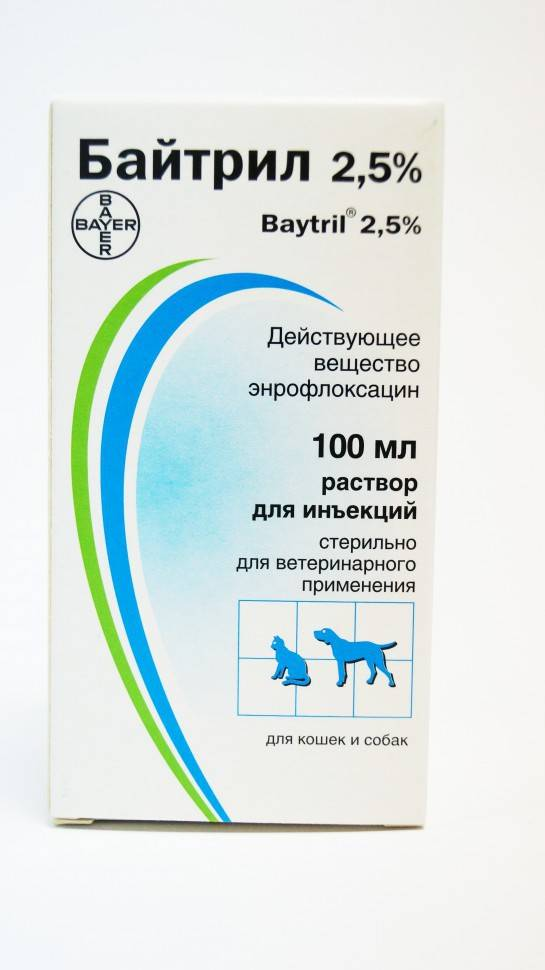 Инструкция по применению байтрила у кошек. рассчитайте оптимальную дозу препарата baytril. изучите широту антибактериального эффекта байтрила для кошек. улучшите эффективность терапии на 200%