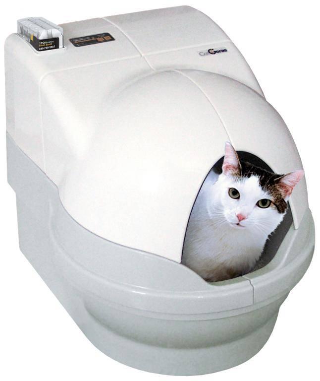 Автоматический туалет для кошек: удобство питомца без хлопот хозяина