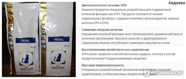 Ренал для кошек: инструкция по применению, состав