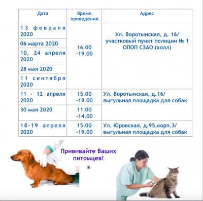 Вакцины против бешенства у собак: типы вакцин, аргументы за и против, периодичность ревакцинации