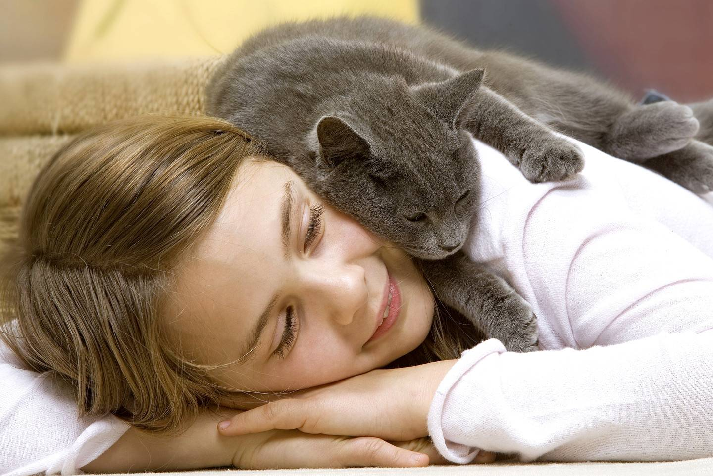 Люди, которые любят кошек, психология и характер: почему некоторым они нравятся больше людей?