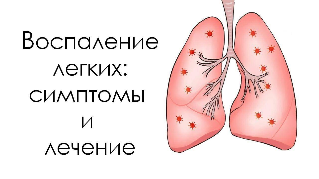 Причины и последствия пневмонии у кошек   плюсы и минусы
