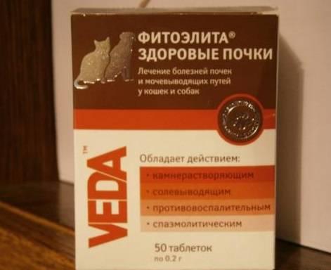 Фитоэлита здоровые почки для кошек: инструкция при применению препарата и отзывы