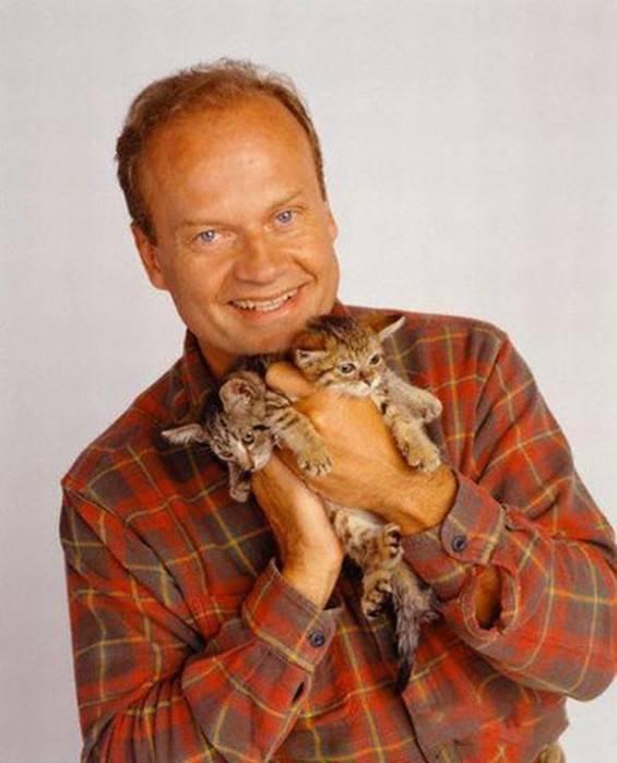 Самые известные в интернете коты и кошки