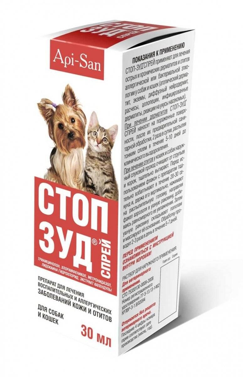 Стоп-зуд — помощь при лечении дерматитов у кошек