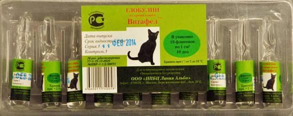 Витафел-с для кошек: характеристика сыворотки, степень эффективности, инструкция по применению