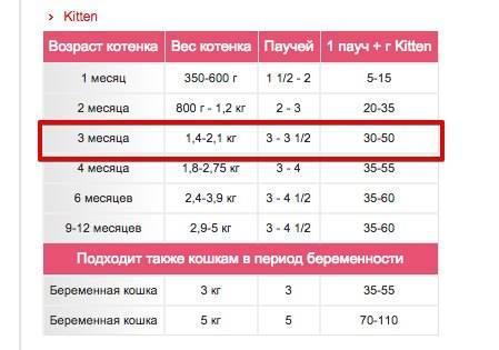 Таблица веса котенка по месяцам