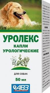 То, что необходимо знать перед использованием препарата уролекс для собак