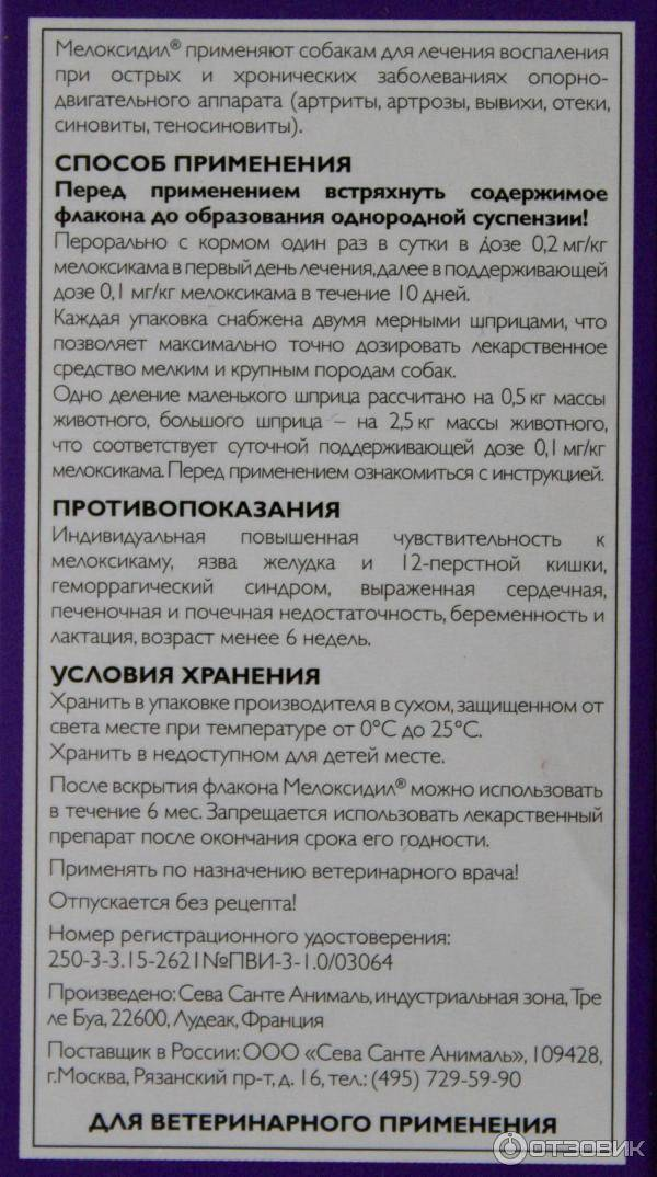 «локсиком» (оральная суспензия) для кошек и собак: дозировка, инструкция по применению