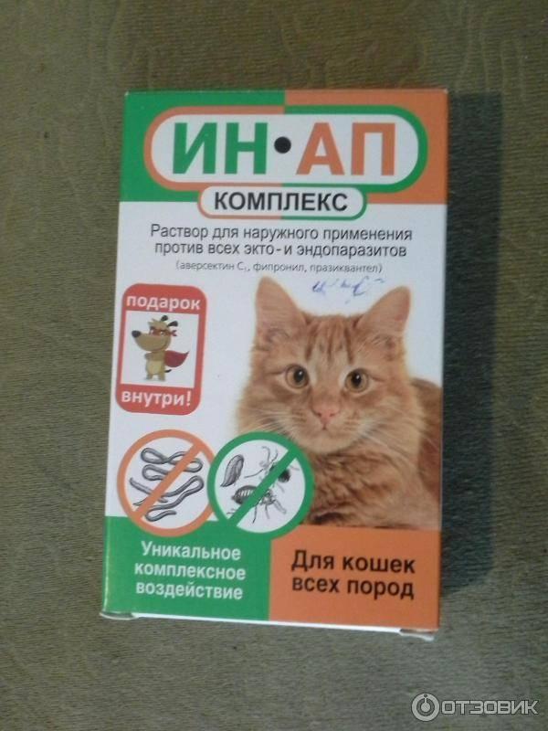 Таблетки от аллергии на кошек - показания к применению, антигистаминные, противоотечные, комбинированные, кортикостероиды