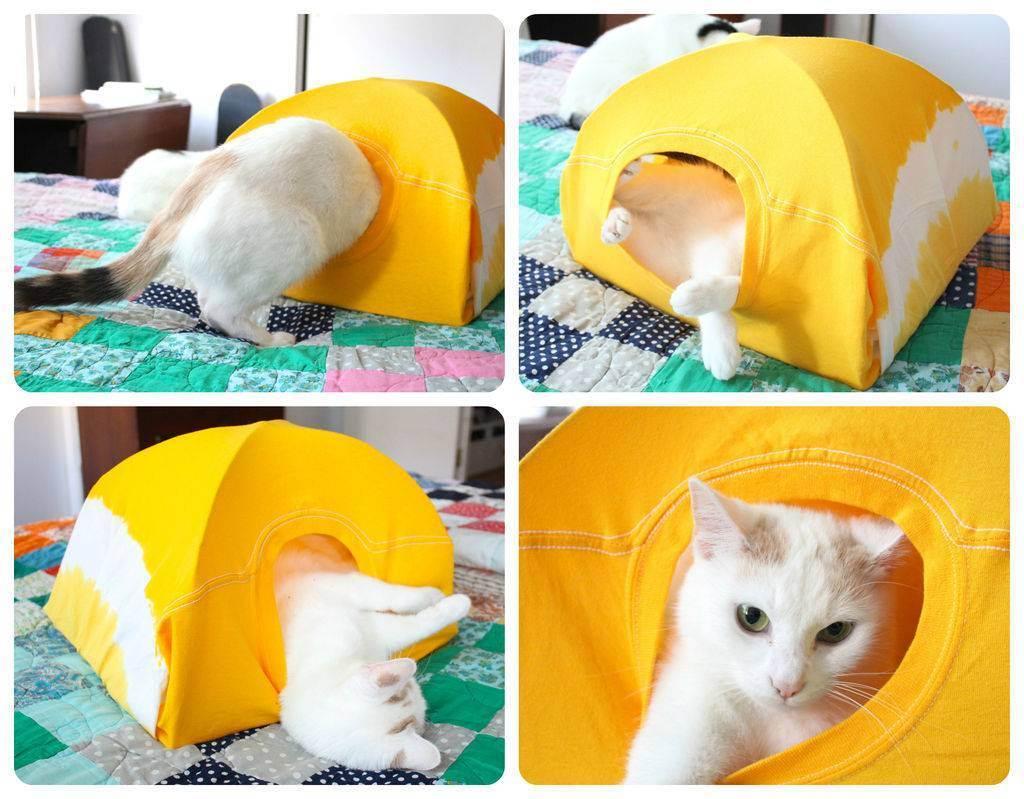 Как сделать игрушки для кошек своими руками в домашних условиях: мягкая и интерактивная
