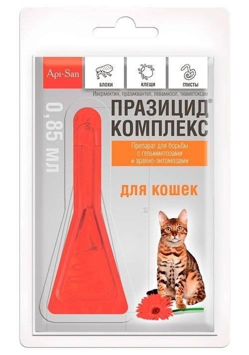 Празицид – таблетки для кошек и котят: инструкция по применению и отзывы